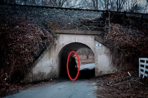 The bunny man bridge