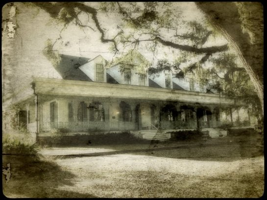 photo of the myrtles